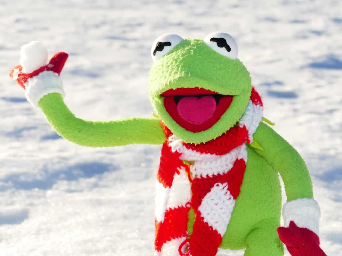 Stuffed Animal Throwing a Snowball